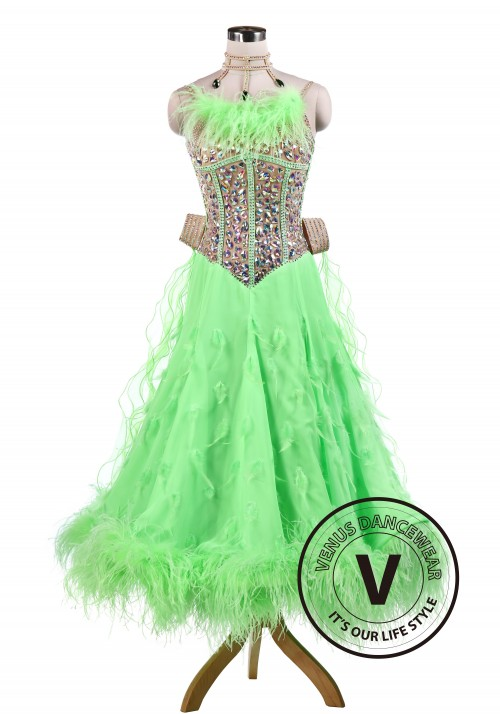 Green gorgeous Ballroom Competition Tango Waltz Dancing Dress