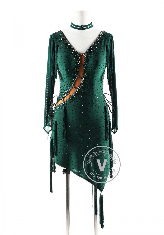 Dark Green dress with tassels Latin Rhythm Competition Dance Dress